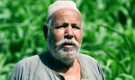 Egyptian farmer Royalty Free Stock Image