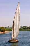 Egyptian Felucca sailing on the Nile Stock Image