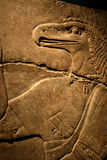 Egyptian Flacon Carving Stock Image