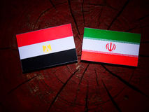 Egyptian flag with Iranian flag on a tree stump isolated. Egyptian flag with Iranian flag on a tree stump Royalty Free Stock Images
