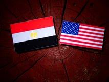 Egyptian flag with USA flag on a tree stump stock image