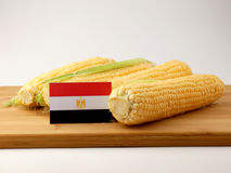 Egyptian flag on a wooden panel with corn isolated on a white ba stock images