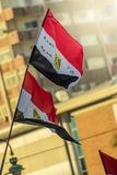 Egyptian Flags Royalty Free Stock Photo