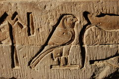 Egyptian hieroglyph. From Kom ombo temple stock photography