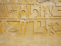 Egyptian hieroglyph Royalty Free Stock Image