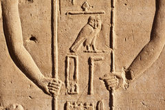 Egyptian Hieroglyphic Royalty Free Stock Image