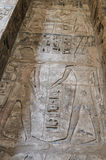 Egyptian hieroglyphic carvings on wall Royalty Free Stock Photo