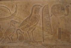 Egyptian hieroglyphic writing with Bird Symbols. On an ancient ruin royalty free stock photos