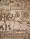Egyptian hieroglyphics on a temple wall Stock Photography