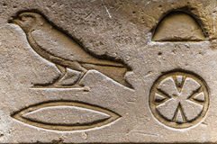 Egyptian hieroglyphs. Ancient real Egyptian hieroglyphs on the wall in a temple Stock Image