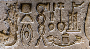Egyptian hieroglyphs of Egypt Stock Image