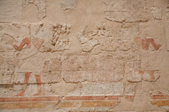 Egyptian Hieroglyphs : Temple of Hatshepsut Stock Image