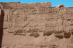 Egyptian hieroglyphs on the wall of Karnak temple Royalty Free Stock Images