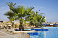 Egyptian Hotel Poolside Stock Images