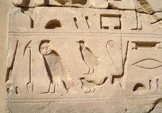 Egyptian images and hieroglyphs . royalty free stock images