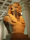 Egyptian King. Pharaoh Statue bust in British Museum Royalty Free Stock Photography
