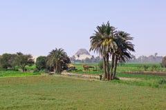 Egyptian landscape stock photo