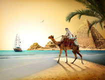 Egyptian landscape Stock Photography