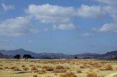 Egyptian landscapes Royalty Free Stock Photo