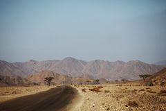 Egyptian landscapes Royalty Free Stock Image