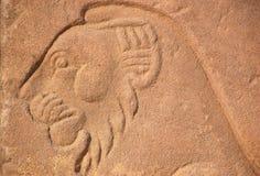 Egyptian lion portrait Stock Images
