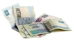 Egyptian Money. Several Egyptian Pound banknotes on white background Royalty Free Stock Photos