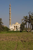 Egyptian Mosque Stock Images