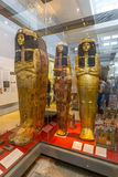 Egyptian mummies in the British Museum Royalty Free Stock Image