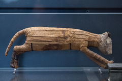 Egyptian mummy cat found inside tomb Stock Images