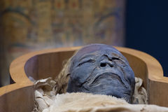 Egyptian mummy Royalty Free Stock Images