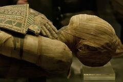 Egyptian mummy. Detail of bead and hands Stock Photography
