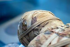 Egyptian mummy head close up Royalty Free Stock Image