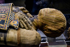 Egyptian Mummy with Horus on chest. An Egyptian Mummy lies in the British Museum.  The methods of embalming, or treating the dead body, that the ancient Royalty Free Stock Image