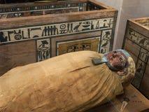Egyptian mummy laying close to the sarcophagi. With various hieroglyphs Stock Photos