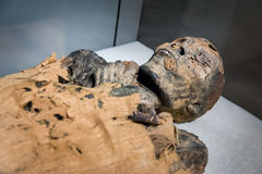 Egyptian mummy. An Egyptian Mummy lies in museum royalty free stock photography