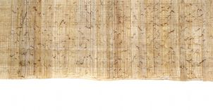 Egyptian papyrus 1. Egyptian Papyrus for headers or footers on a white Stock Photo