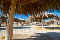 Egyptian parasols on the beach of Red Sea Royalty Free Stock Photo