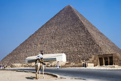 egyptian policeman on camel guards the pyramid in Giza Egypt Royalty Free Stock Image