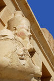 Egyptian Queen Hatshepsut Royalty Free Stock Photography