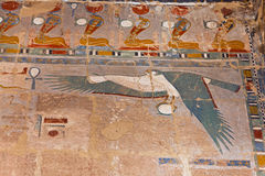 Egyptian Ruins Falcon Flying Stock Photos