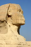 Egyptian sphinx. Monument with broken nose Royalty Free Stock Photography