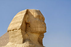 Egyptian Sphinx, the head. The Egyptian pyramids and historical places. The ruins of antiquity, travel and tourism. The archaeological excavations. The ancient Stock Photography