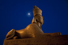 Egyptian sphinx and moon in Saint-Petersburg Stock Images