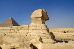 Egyptian Sphinx. Royalty Free Stock Photos
