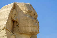 Egyptian Sphinx, ruins of antiquity. Stock Photography