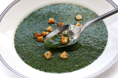 Egyptian spinach soup Stock Photos