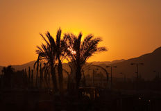 Egyptian sunset Royalty Free Stock Photos