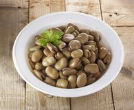 Egyptian Dish of Beans Royalty Free Stock Photos