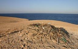 Egyptier Eagle Nest från olikt skräp på en liten ö Fotografering för Bildbyråer