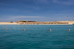 Egyptisch strand Royalty-vrije Stock Fotografie